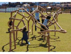 PDPlay Vine Climber – Natural Playground